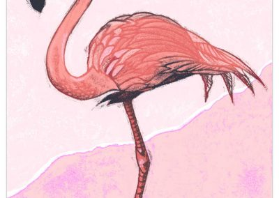 Pink flamingo standing on one leg.